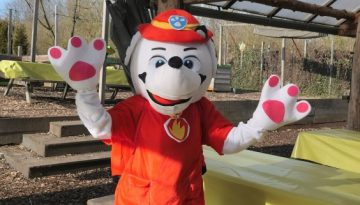 Paw Patrol kinderfeestje in Almere