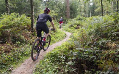 Mountainbiken-Bergherbos-uitje